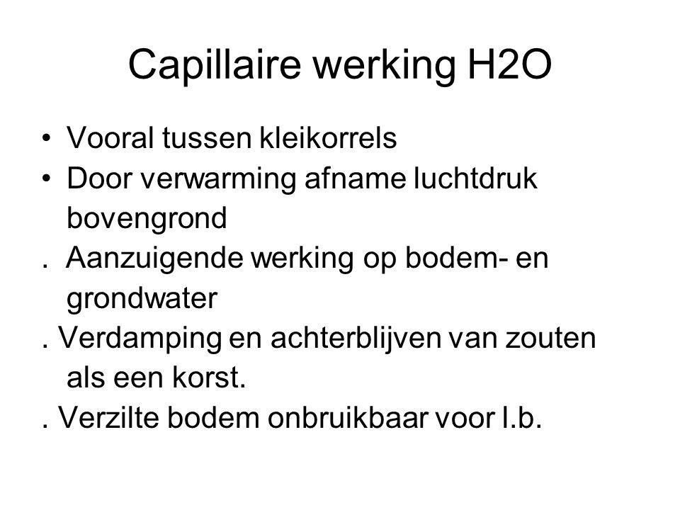 Capillaire werking H2O Vooral tussen kleikorrels Door verwarming afname luchtdruk bovengrond. Aanzuigende werking op bodem- en grondwater. Verdamping