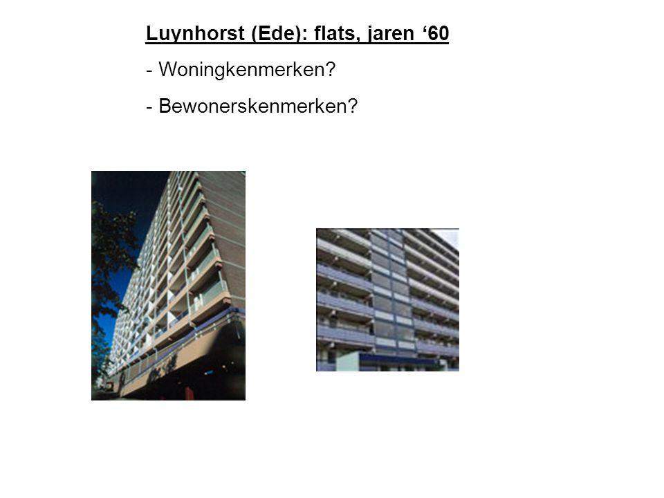 Luynhorst (Ede): flats, jaren '60 - Woningkenmerken - Bewonerskenmerken