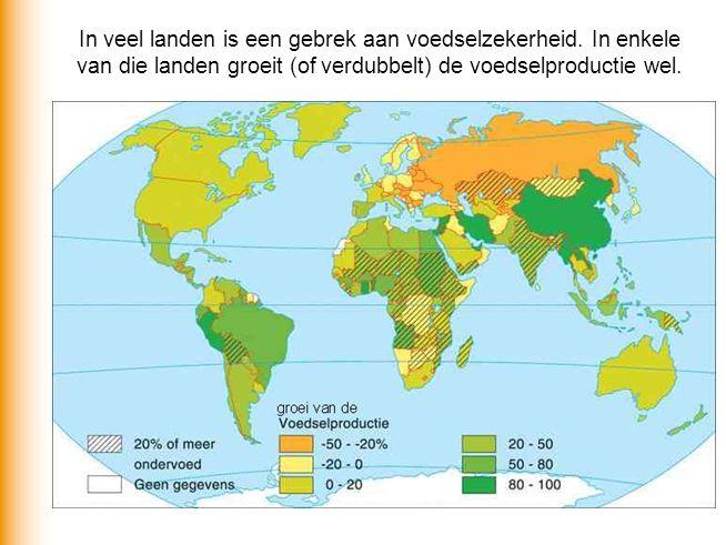 Honger bestrijden via internationale voedselhandel. Welke mogelijkheden zijn er?