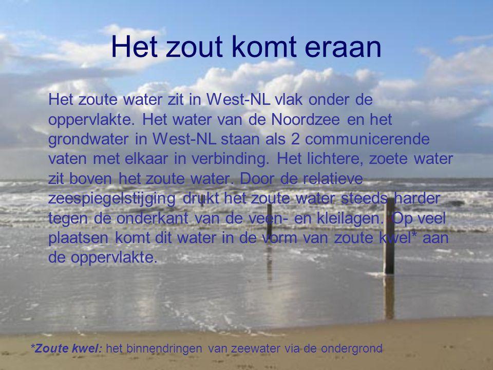 Het zout komt eraan Het zoute water zit in West-NL vlak onder de oppervlakte. Het water van de Noordzee en het grondwater in West-NL staan als 2 commu