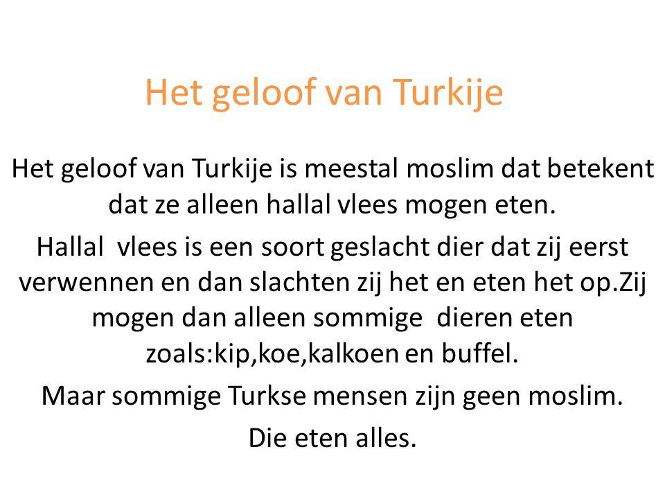 Het geloof van Turkije Het geloof van Turkije is meestal moslim dat betekent dat ze alleen hallal vlees mogen eten. Hallal vlees is een soort geslacht