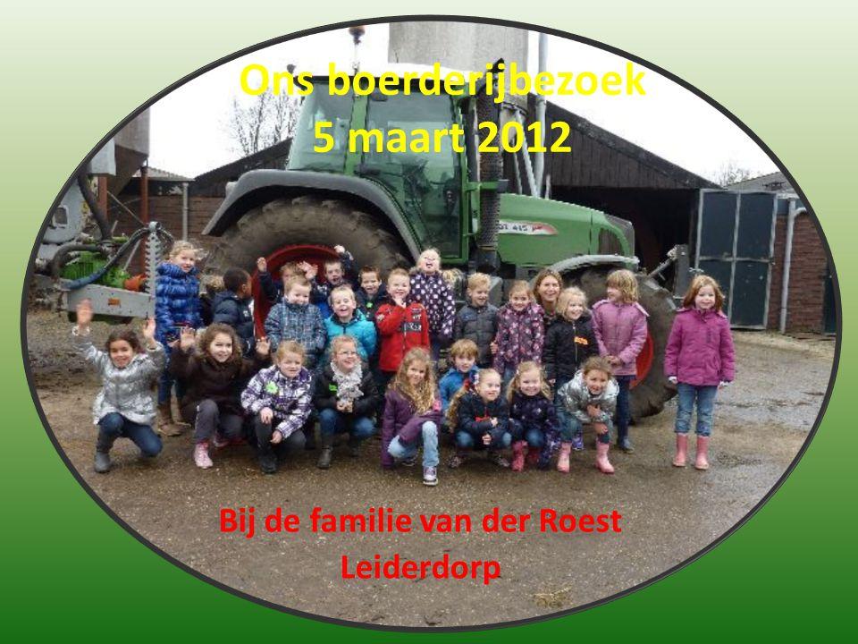 Ons boerderijbezoek 5 maart 2012 Bij de familie van der Roest Leiderdorp