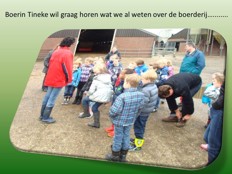 Boerin Tineke wil graag horen wat we al weten over de boerderij…........