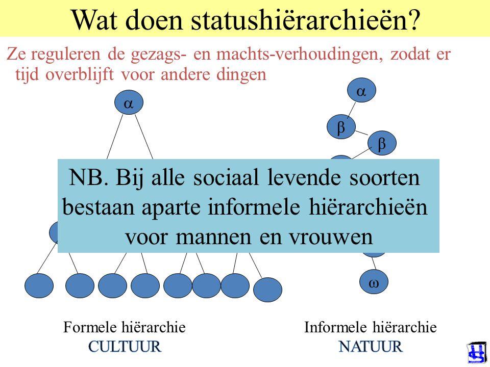 Wat doen statushiërarchieën? Ze reguleren de gezags- en machts-verhoudingen, zodat er tijd overblijft voor andere dingen  β β ω β β  NB. Bij alle so