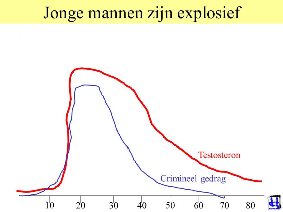 Jonge mannen zijn explosief 10 20 50 Testosteron Crimineel gedrag 6070403080