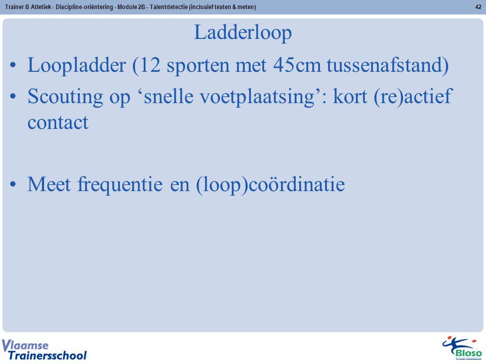 Trainer B Atletiek - Discipline-oriëntering - Module 2B - Talentdetectie (inclusief testen & meten)42 Ladderloop Loopladder (12 sporten met 45cm tusse