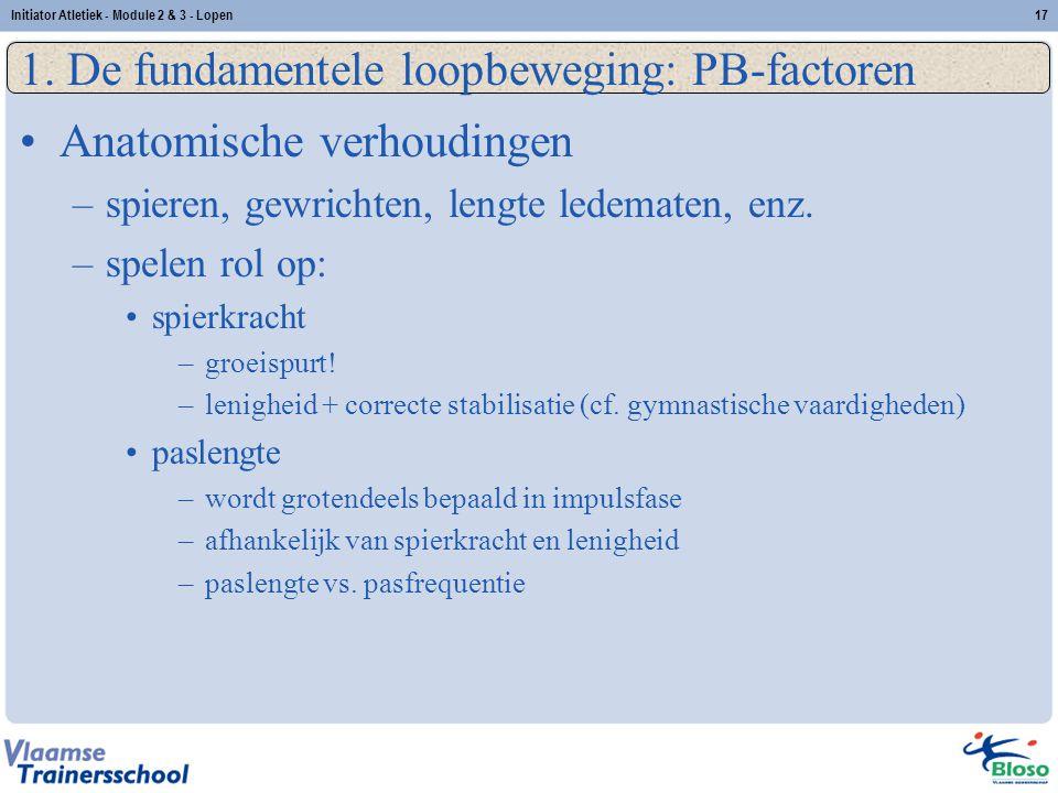 17 1. De fundamentele loopbeweging: PB-factoren Anatomische verhoudingen –spieren, gewrichten, lengte ledematen, enz. –spelen rol op: spierkracht –gro