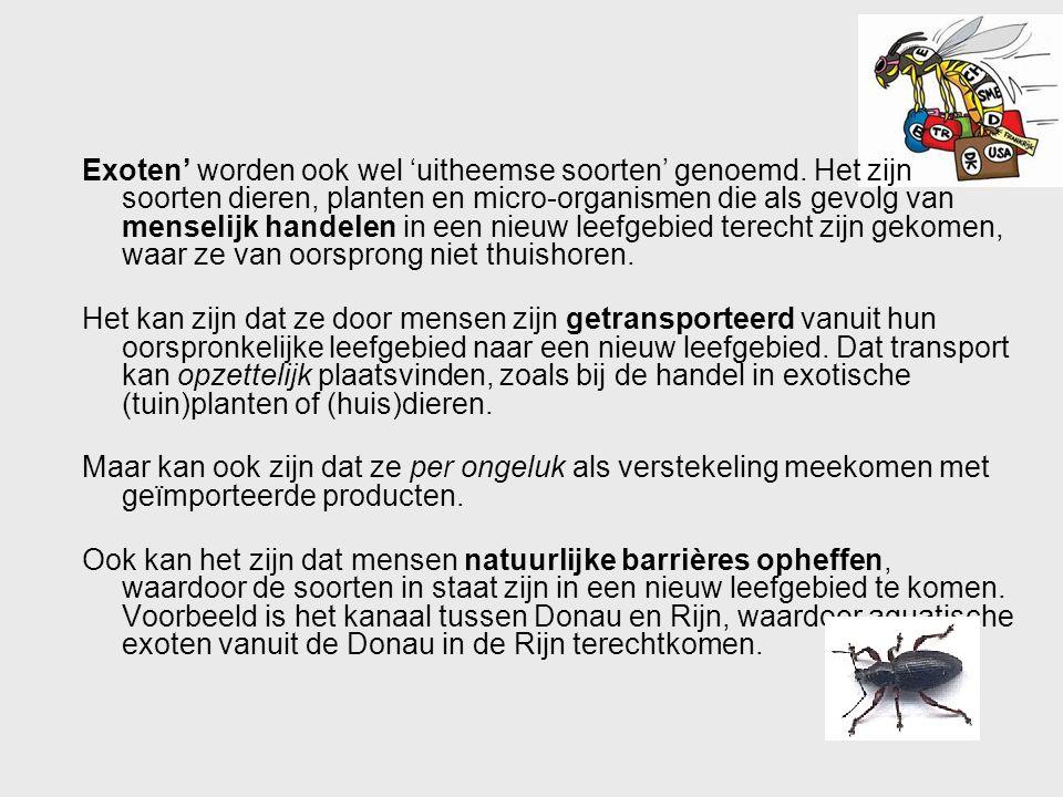 Exoten' worden ook wel 'uitheemse soorten' genoemd. Het zijn soorten dieren, planten en micro-organismen die als gevolg van menselijk handelen in een