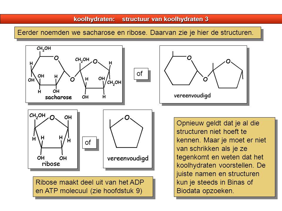 koolhydraten: structuur van koolhydraten 3 Eerder noemden we sacharose en ribose. Daarvan zie je hier de structuren. of Opnieuw geldt dat je al die st