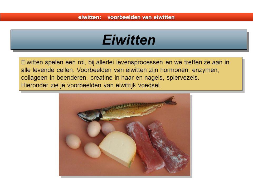 eiwitten: structuur van eiwitten 4 Bij insuline zijn er 3 zwavel- bruggen.