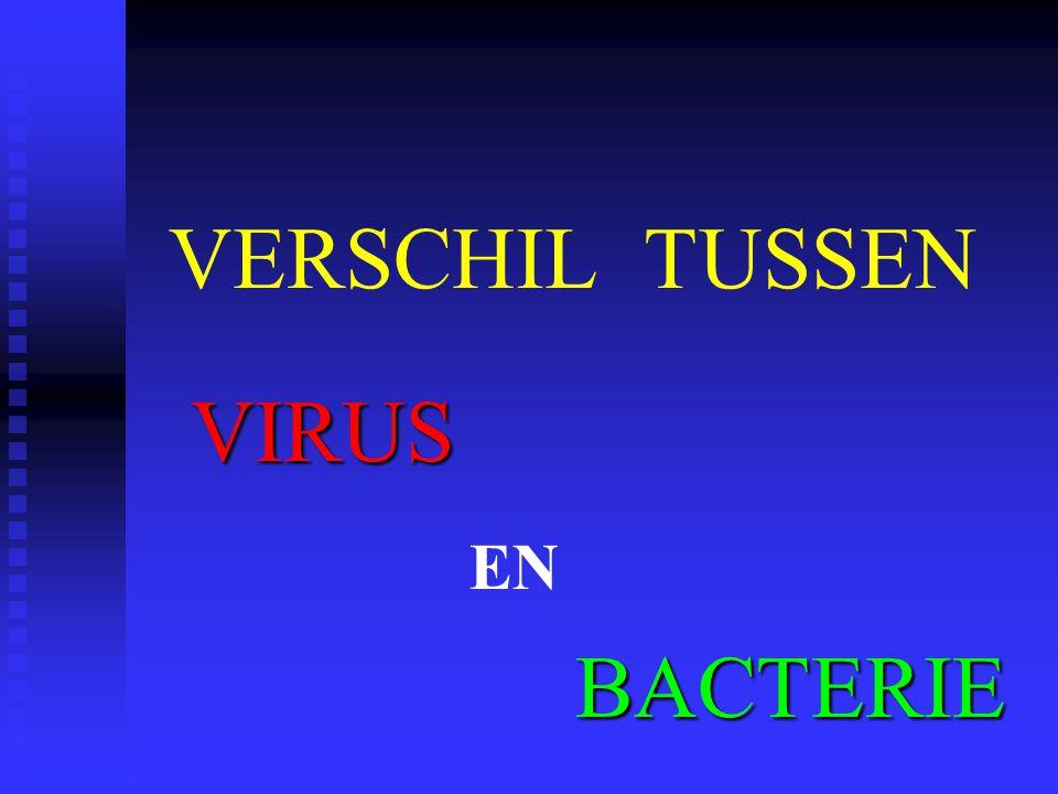 VERSCHIL TUSSEN VIRUS BACTERIE EN