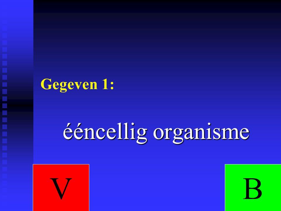 Gegeven 1: ééncellig organisme VB