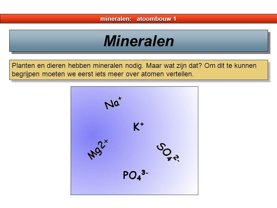 mineralen: atoombouw 1 Planten en dieren hebben mineralen nodig. Maar wat zijn dat? Om dit te kunnen begrijpen moeten we eerst iets meer over atomen v