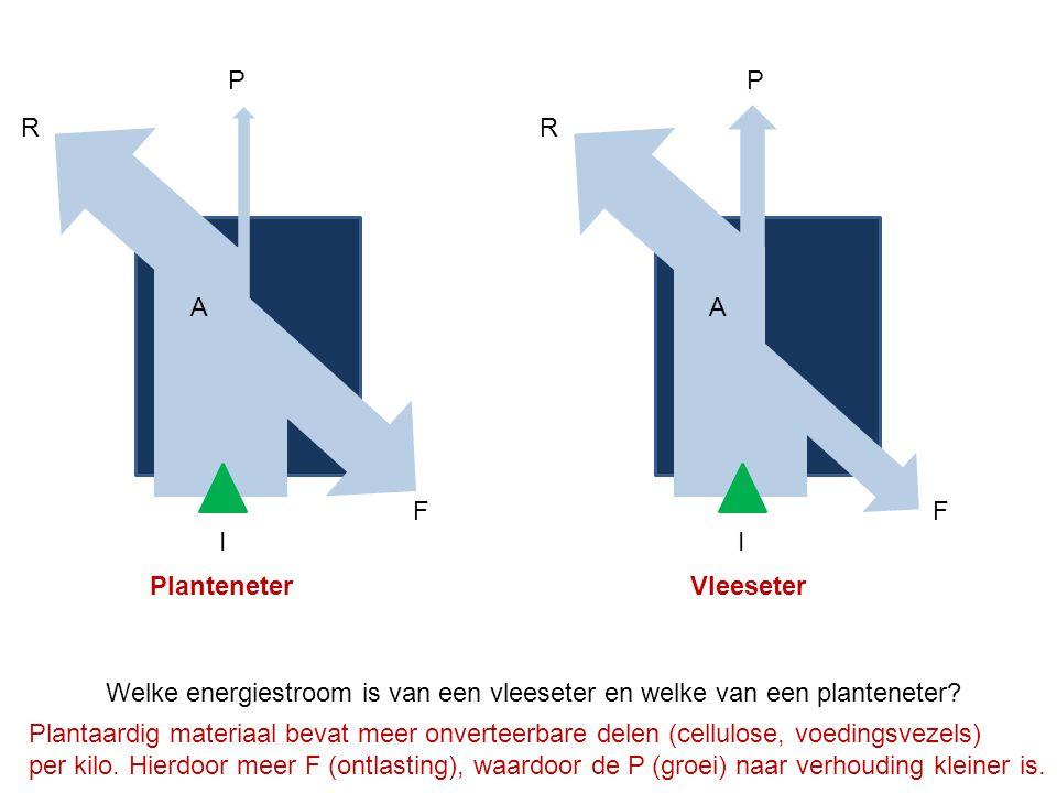 R A F I P R A F I P Welke energiestroom is van een vleeseter en welke van een planteneter? PlanteneterVleeseter Plantaardig materiaal bevat meer onver