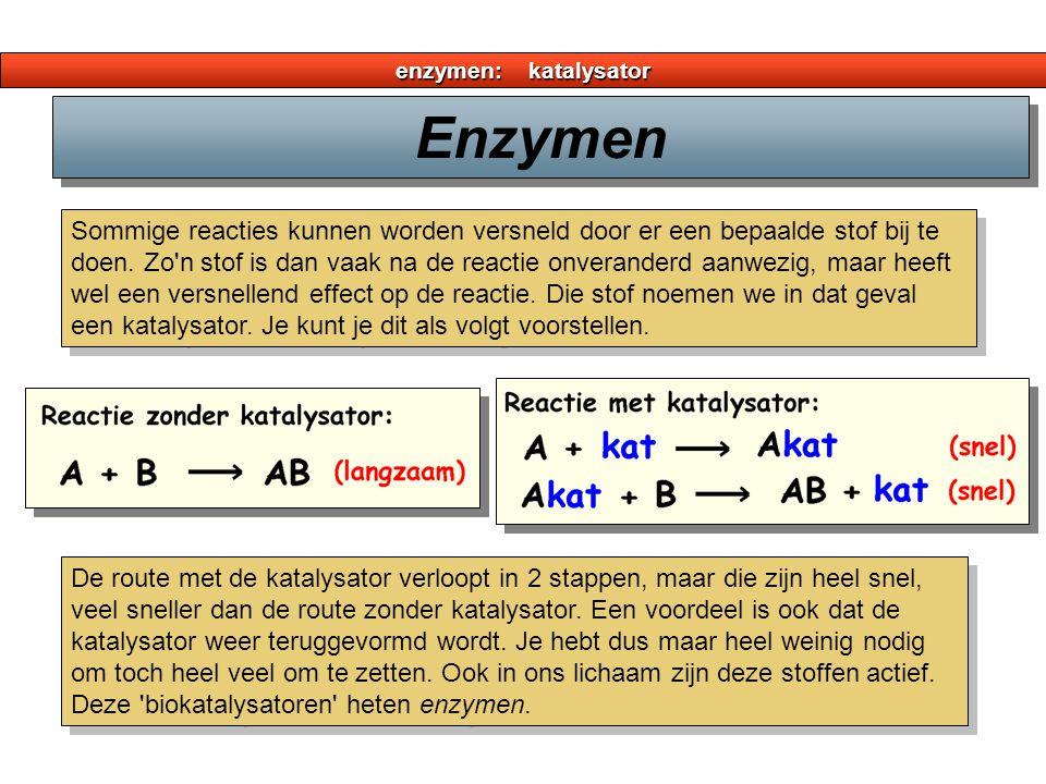 enzymen: katalysator Sommige reacties kunnen worden versneld door er een bepaalde stof bij te doen. Zo'n stof is dan vaak na de reactie onveranderd aa