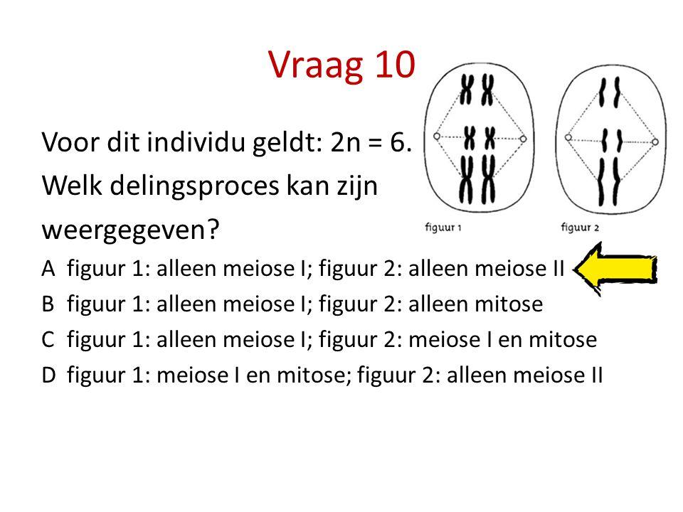 Vraag 10 Voor dit individu geldt: 2n = 6. Welk delingsproces kan zijn weergegeven? Afiguur 1: alleen meiose I; figuur 2: alleen meiose II Bfiguur 1: a