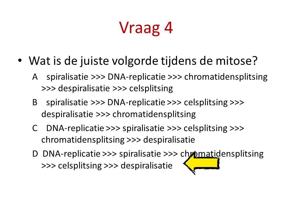 Vraag 4 Wat is de juiste volgorde tijdens de mitose? A spiralisatie >>> DNA-replicatie >>> chromatidensplitsing >>> despiralisatie >>> celsplitsing B