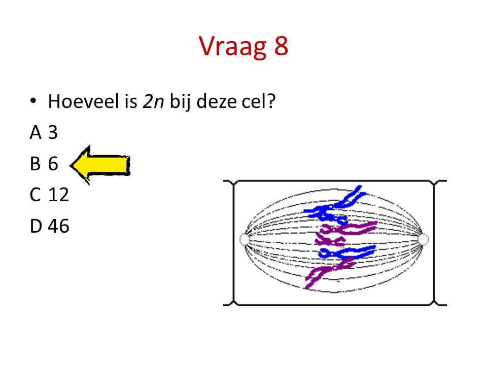Vraag 8 Hoeveel is 2n bij deze cel? A3 B6 C12 D46