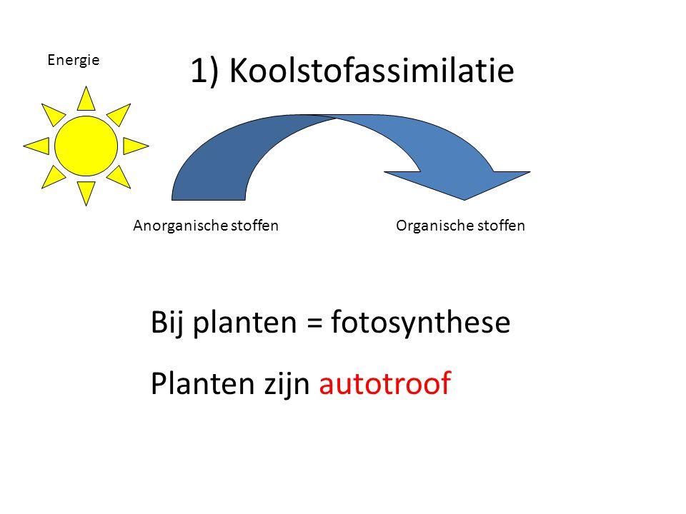 Energie Anorganische stoffenOrganische stoffen Bij planten = fotosynthese Planten zijn autotroof 1) Koolstofassimilatie