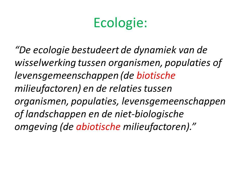 Niveaus van de ecologie 1.Individu (bv.