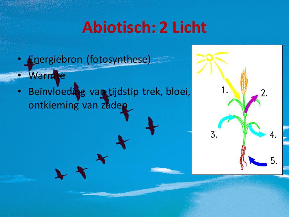 Abiotisch: 2 Licht Energiebron (fotosynthese) Warmte Beïnvloeding van tijdstip trek, bloei, ontkieming van zaden