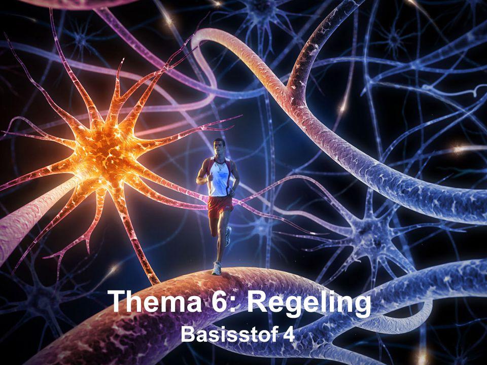 Basisstof 4 Thema 6: Regeling