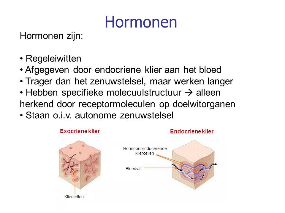 Hormonen Hormonen zijn: Regeleiwitten Afgegeven door endocriene klier aan het bloed Trager dan het zenuwstelsel, maar werken langer Hebben specifieke molecuulstructuur  alleen herkend door receptormoleculen op doelwitorganen Staan o.i.v.