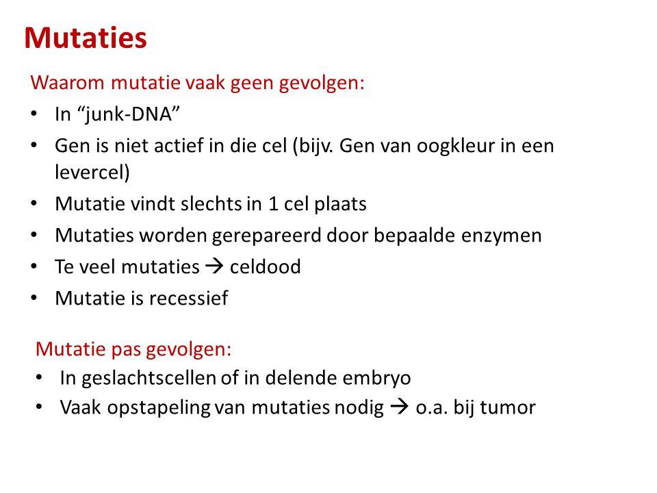 Aantal mutaties  ongeremde celdeling  Primaire tumor Tumor ingekapseld  goedaardig Mutatie  niet meer ingekapseld  kwaadaardig  cellen uit primaire tumor komen in bloed of lymfe  uitzaaiingen (metastase)  secundaire tumoren Kanker