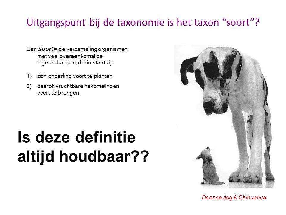 Uitgangspunt bij de taxonomie is het taxon soort .