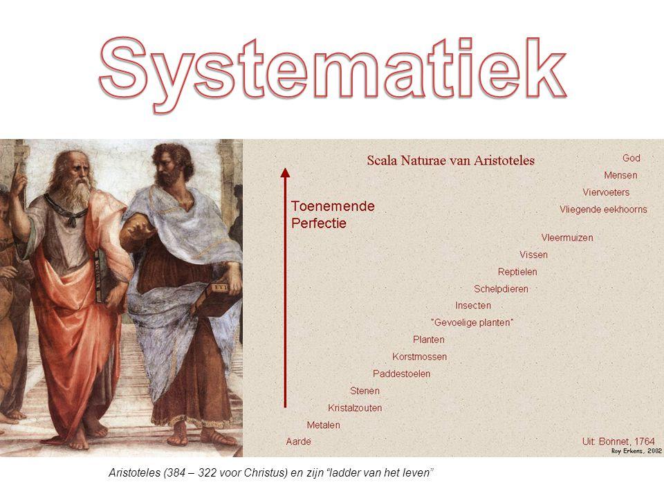 Systematiek = het proberen een logisch systeem in de taxonomie te krijgen.