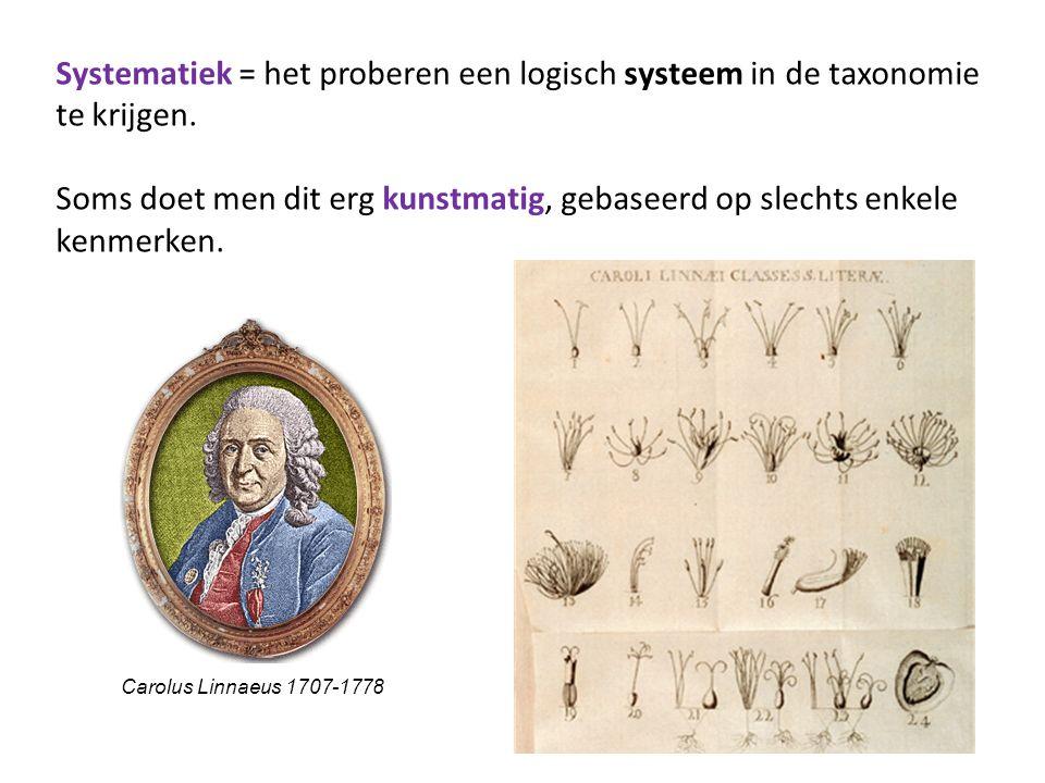 Tegenwoordig probeert men de taxonomie / de classificatie zoveel mogelijk te doen overeenkomstig het natuurlijke ontstaan (= de evolutie) van de soorten: de primitiefste vooraan, de laatst ontstane meest complexe soorten achteraan.