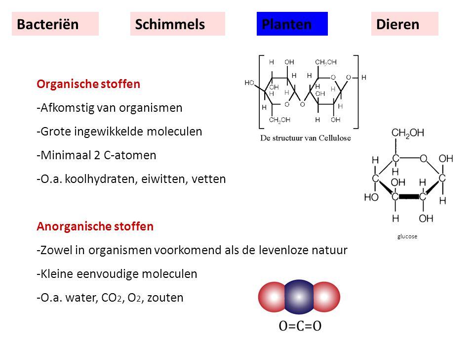 BacteriënSchimmelsPlantenDieren Organische stoffen -Afkomstig van organismen -Grote ingewikkelde moleculen -Minimaal 2 C-atomen -O.a.