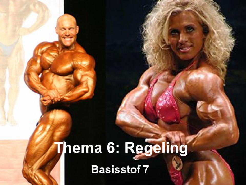 Basisstof 7 Thema 6: Regeling