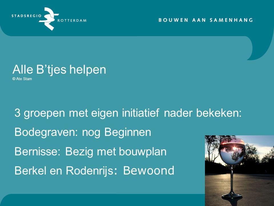 Alle B'tjes helpen © Ate Stam 3 groepen met eigen initiatief nader bekeken: Bodegraven: nog Beginnen Bernisse: Bezig met bouwplan Berkel en Rodenrijs : Bewoond