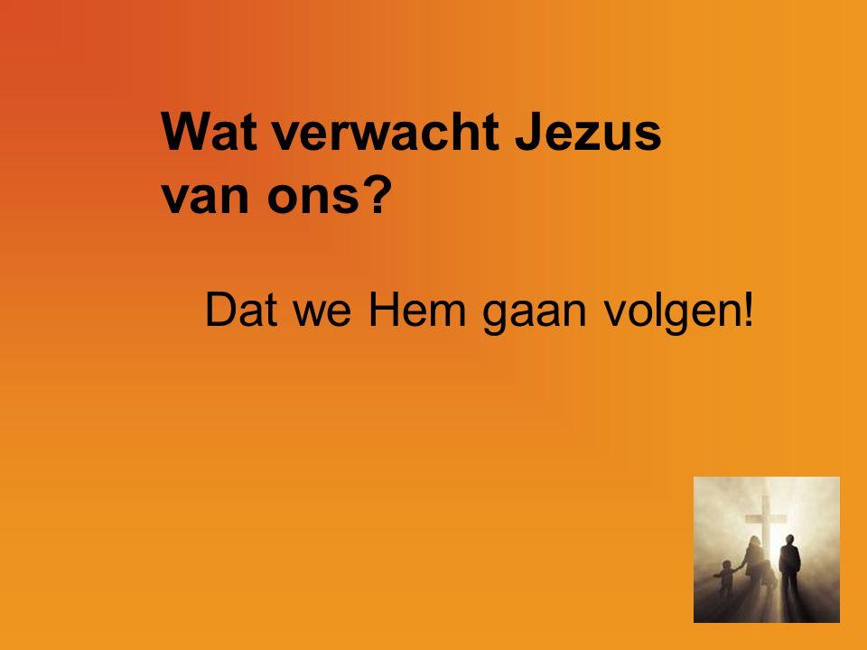 Wat verwacht Jezus van ons? Dat we Hem gaan volgen!