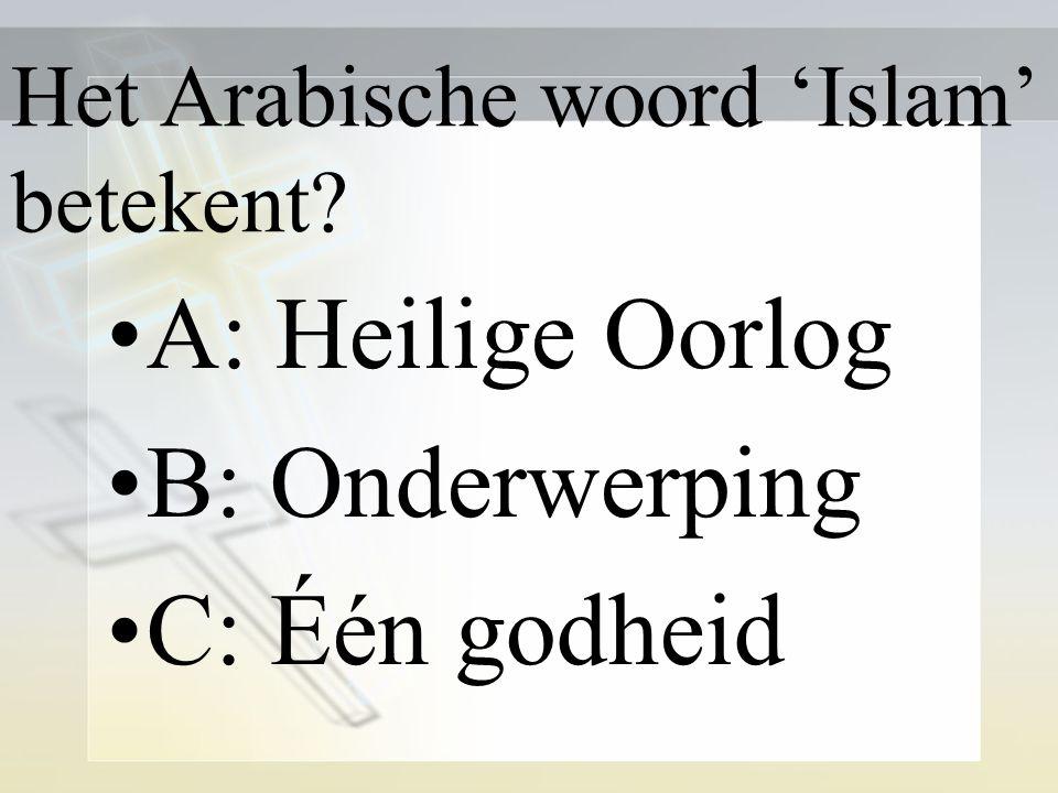 Mohammed was vlgs de Islam? A: Zoon van God B: profeet C: verlosser