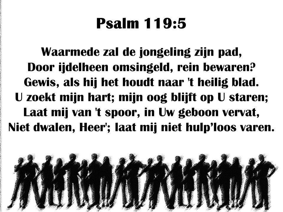 Psalm 119:5 Waarmede zal de jongeling zijn pad, Door ijdelheen omsingeld, rein bewaren.