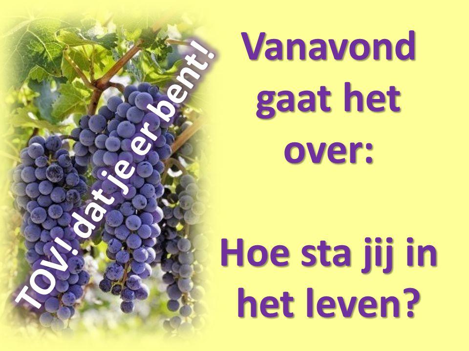 5 Ik ben de Wijnstok, u de ranken; wie in Mij blijft, en Ik in hem, die draagt veel vrucht, want zonder Mij kunt u niets doen.