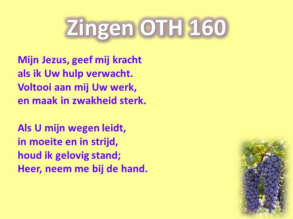 Mijn Jezus, geef mij kracht als ik Uw hulp verwacht. Voltooi aan mij Uw werk, en maak in zwakheid sterk. Als U mijn wegen leidt, in moeite en in strij