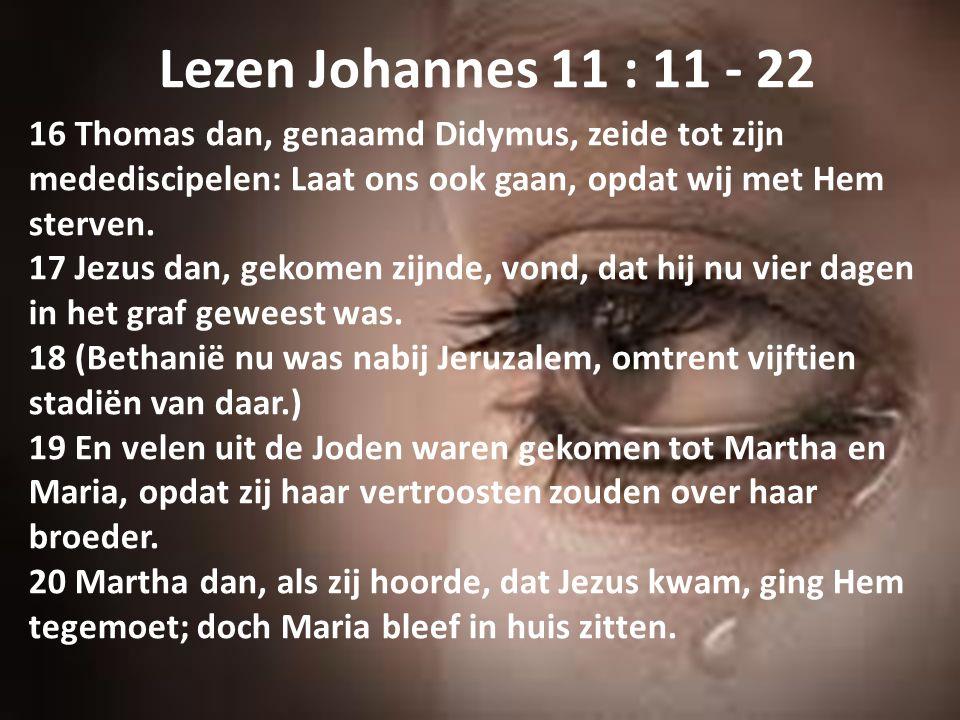 Lezen Johannes 11 : 11 - 22 16 Thomas dan, genaamd Didymus, zeide tot zijn medediscipelen: Laat ons ook gaan, opdat wij met Hem sterven. 17 Jezus dan,