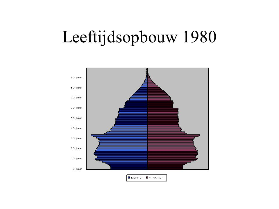 Leeftijdsopbouw 1980