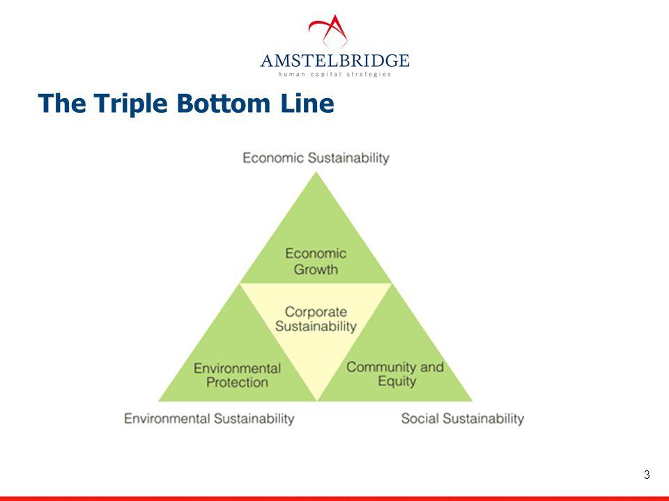 The Triple Bottom Line 3
