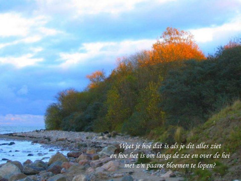 Om in heel helder water te duiken, Tussen witte lelies en ruisend riet.