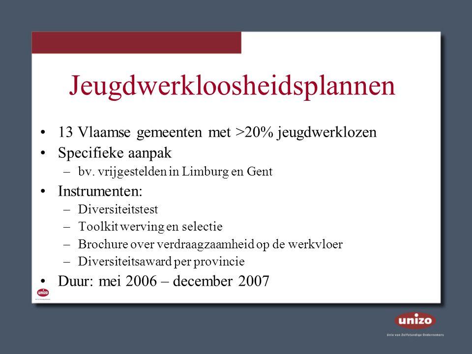 Jeugdwerkloosheidsplannen 13 Vlaamse gemeenten met >20% jeugdwerklozen Specifieke aanpak –bv. vrijgestelden in Limburg en Gent Instrumenten: –Diversit