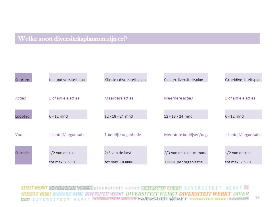16 SoortenInstapdiversiteitsplanKlassiek diversiteitsplanClusterdiversiteitsplanGroeidiveristeitsplan Acties1 of enkele actiesMeerdere acties 1 of enk