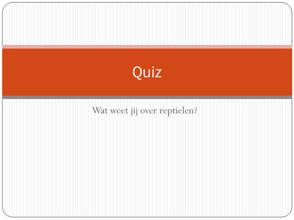 Wat weet jij over reptielen? Quiz