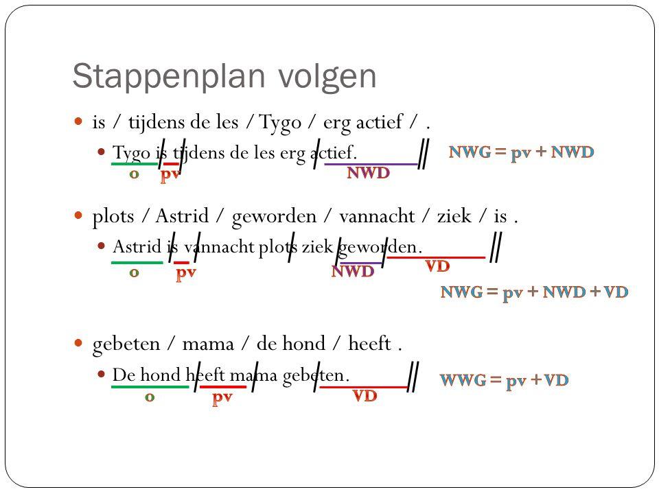 Stappenplan volgen is / tijdens de les / Tygo / erg actief /.