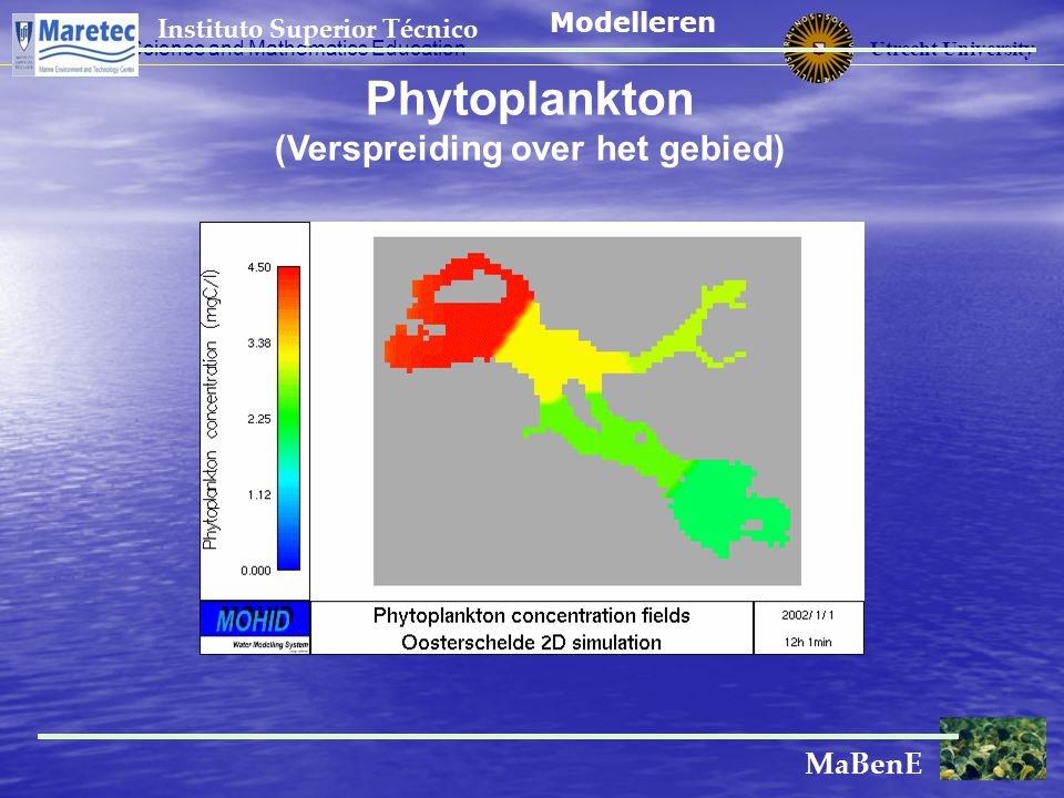Utrecht University Centre for Science and Mathematics Education Instituto Superior Técnico MaBenE Phytoplankton (Verspreiding over het gebied) Modelle