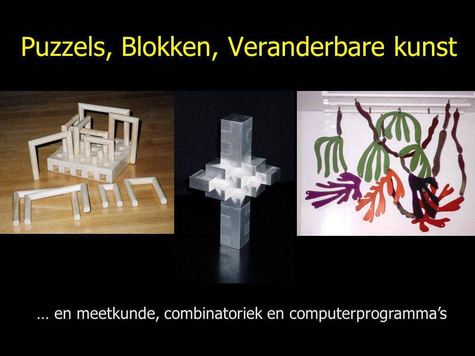 Puzzels, Blokken, Veranderbare kunst … en meetkunde, combinatoriek en computerprogramma's