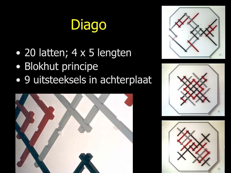 Diago 20 latten; 4 x 5 lengten Blokhut principe 9 uitsteeksels in achterplaat